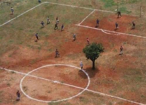 arbrestadefootball1.jpg
