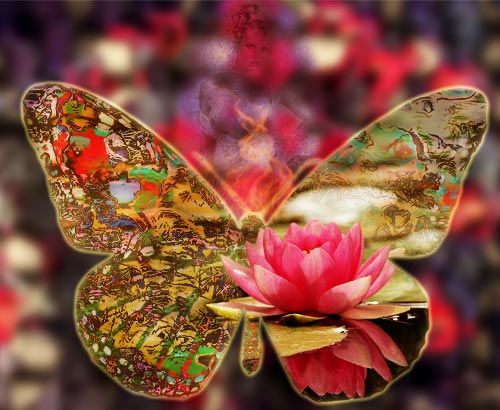 fractalefemmepapillon.jpg