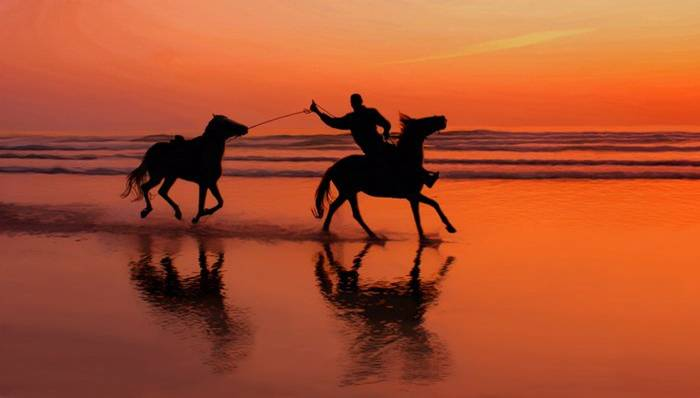 chevauxlaplage.jpg