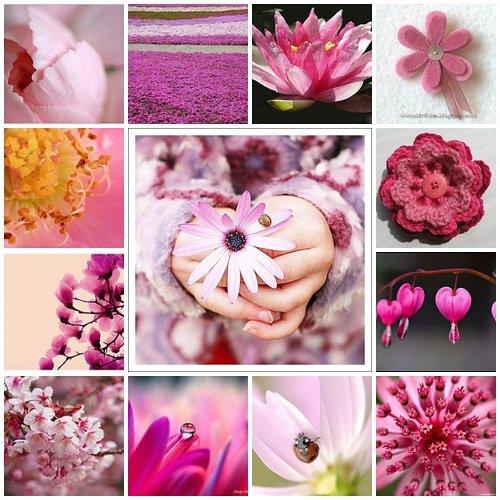 fleursgift.jpg